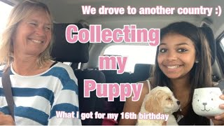 GETTING MY FIRST PUPPY🥰-travelling 674 miles in a car😱