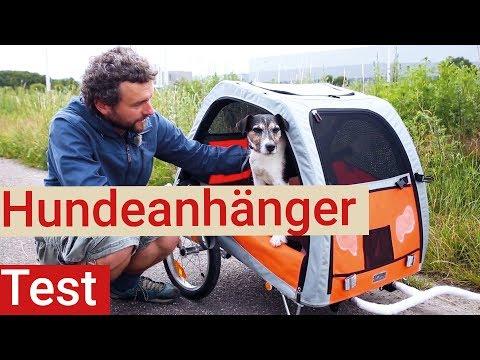 Hundefahrradanhänger im Test - mit Oskar - Petego Comfort Wagon L vs. Trixi Friends on Tour