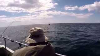 Skerries Bank Dartmouth Plaice Fishing