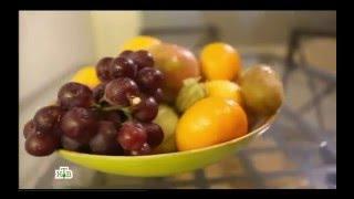 ФРУКТЫ: Познавательный фильм от НТВ о фруктовых мифах и правде, здоровье, сыроедении и фруктоедах!