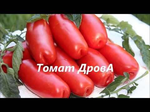 Обзор семян новых помидоров. Посылка с семенами.