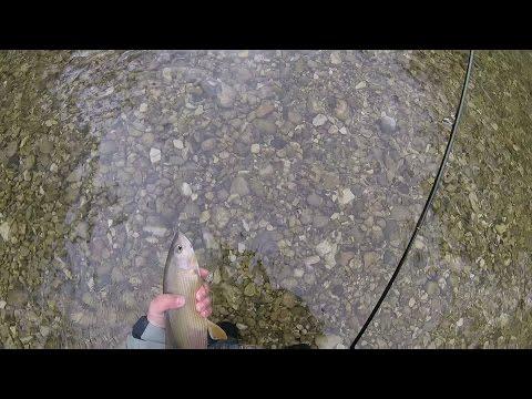 Le attrezzature per pescare dalle mani