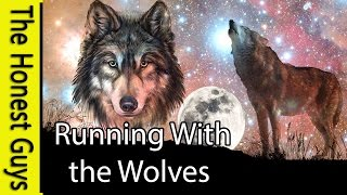 GUIDED MEDITATION: Running With Wolves - Epic Meditation
