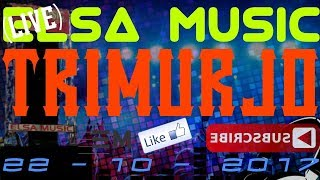 ELSA MUSIC LIVE TRIMURJO (4)