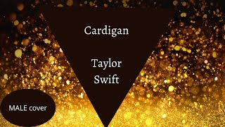 Cardigan - Taylor Swift (male cover)