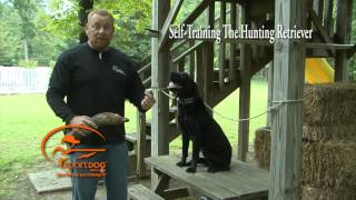Vid 13 Force Fetch Continuance