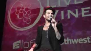 Adam Lambert -  Trespassing, ABTD & Lucy-  Live In the Vineyard, Napa 2015 11 06 011