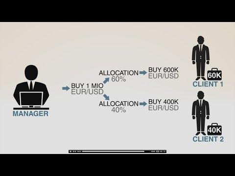 Mokamas vaizdo kursas, kaip užsidirbti pinigų internetu