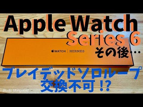 Apple Watch Series6 その後… ブレイデッドソロループ交換不可 !? 〜エルメスシンプルトゥール〜
