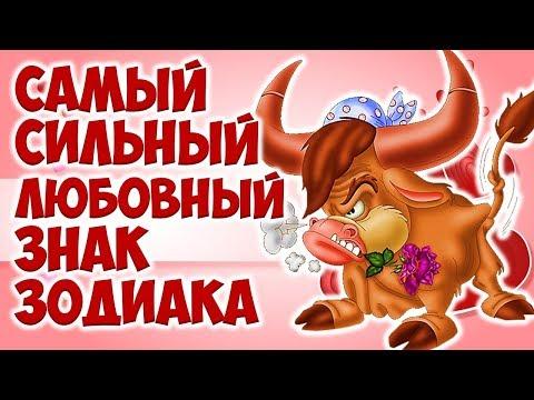 Совместимость по гороскопу женщина козерог и мужчина телец