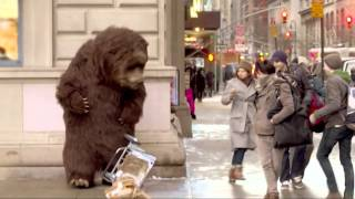 Bear in NYC Prank!