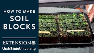 How to Make your Own Soil Blocks to Start Seeds Indoors