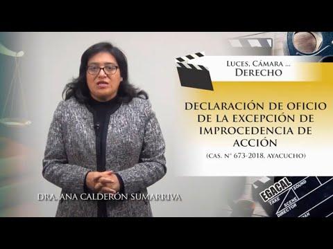 DECLARACIÓN DE OFICIO DE LA EXCEPCIÓN DE IMPROCEDENCIA DE ACCIÓN - Luces Cámara Derecho 141