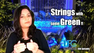 Strings with some Green, String Waterfall, Vertical Garden, String Waterfall with Vertical Garden