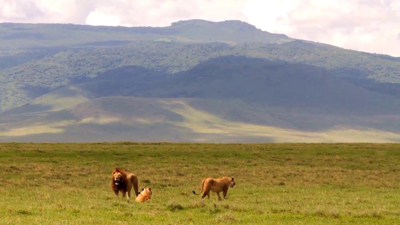 Tansania: Ngorongoro Krater (0:38)