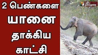 கோவை: 2 பெண்களை யானை தாக்கிய காட்சி - வீடியோ | Elephant