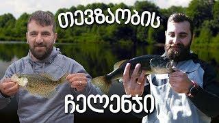დიდპირა ბასზე თევზაობა