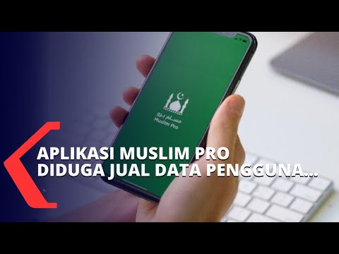 aplikasi muslim pro diduga jual data pengguna ke militer amerika ini penjelasan ahli it