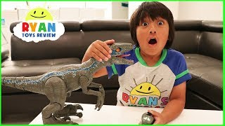 Pet Dinosaur Jurassic World Alpha Training Blue visits Ryan!!!!
