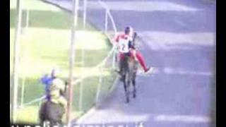 53° Palio dei Micci (2008) – La Corsa