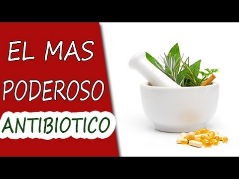 remedio de prostatitis bacteriana