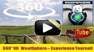 360 Videos | VR | Virtual Reality | Husky Dog FreeRanging Put To Guitar Meditations
