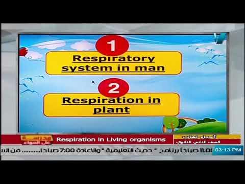 أحياء لغات للصف الثاني الثانوي 2021 - الحلقة 19 - Respiration in living organisms