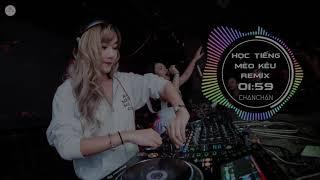 Học Tiếng Mèo Kêu Remix 2019 - ChanChan