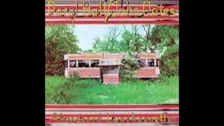 Hall & Oates - Had i Known you better then