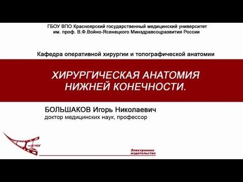 Большаков И.Н. - Нижняя конечность, оперативная хирургия и топографическая анатомия