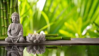 reiki zen meditation music relax your mind and body soothing music