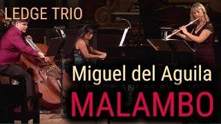flute piano double bass contrabass trio MALAMBO Miguel del Aguila Ledge Trio
