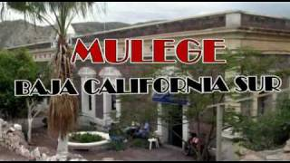 preview picture of video 'Mulege'