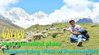 preview picture of video 'My Darma Valley Trek Tour | Panchachuli Base Camp | Beautiful Rung Mung Himalaya  Valley | Dharchula'