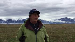 ORI's Denver Holt discusses Great Horned Owl behavior at the Charlo Osprey nest