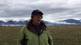 ORI's Denver Holt discusses Great Horned Owl behavior at the Charlo Osprey nest