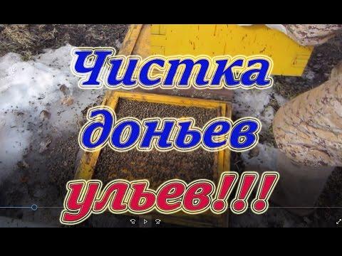 Весенние работы на пасеке, смена и чистка доньев после массового облёта пчёл. Beekeeping.