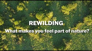 Thumbnail for Rewilding -  How Does it Connect You With Nature?