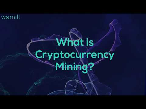 steam cryptocurrency miner