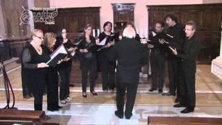 MUSICANIMA  Il Bianco E Dolce Cigno  JACOB ARCADELT