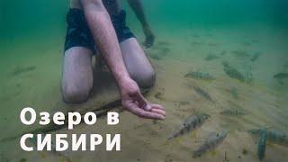 Рыбалка в оськино томская область