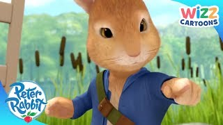 Peter Rabbit | Chased by the Fox! | Action-Packed Adventures | Wizz Cartoons