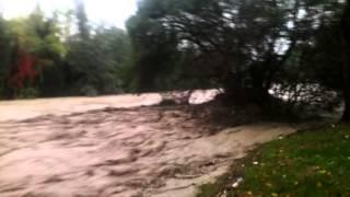 preview picture of video 'Alluvione a Parma: Via Varese ed il ponte delle Piccole Figlie'