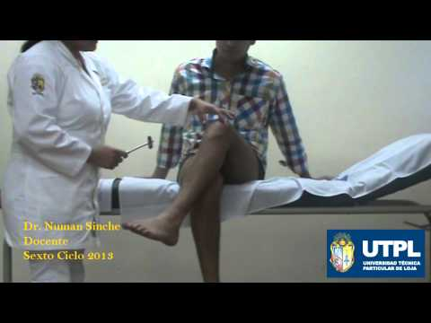 Examen Neurológico: REFLEJOS