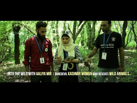 Into the wild with Aaliya Mir | Daredevil Kashmir woman who rescues wild animals