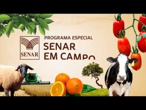 SENAR em Campo: Administração Rural – Gestão de Empresas Rurais