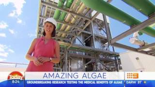 A great piece on the Today Show Australia highlighting the health benefits