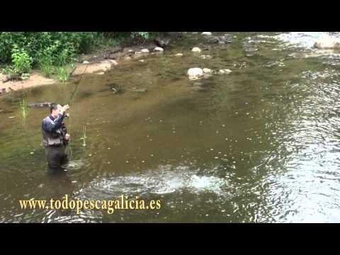 Pesca di compiti a casa superiore