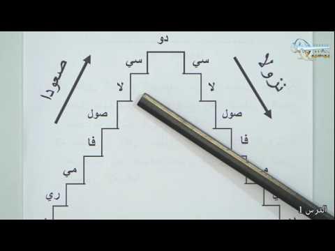 الدرس الأول في النظريات - المستوى الأول