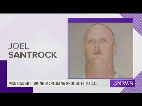 Corpus Christi man caught transporting marijuana products bought in Colorado